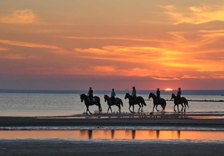 A photo of a group horseback riding in Costa Rica