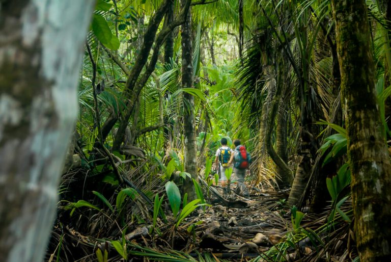 A photo of people hiking in Costa Rica.